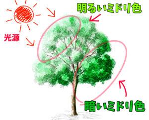 絵を描く 木の描き方 背景