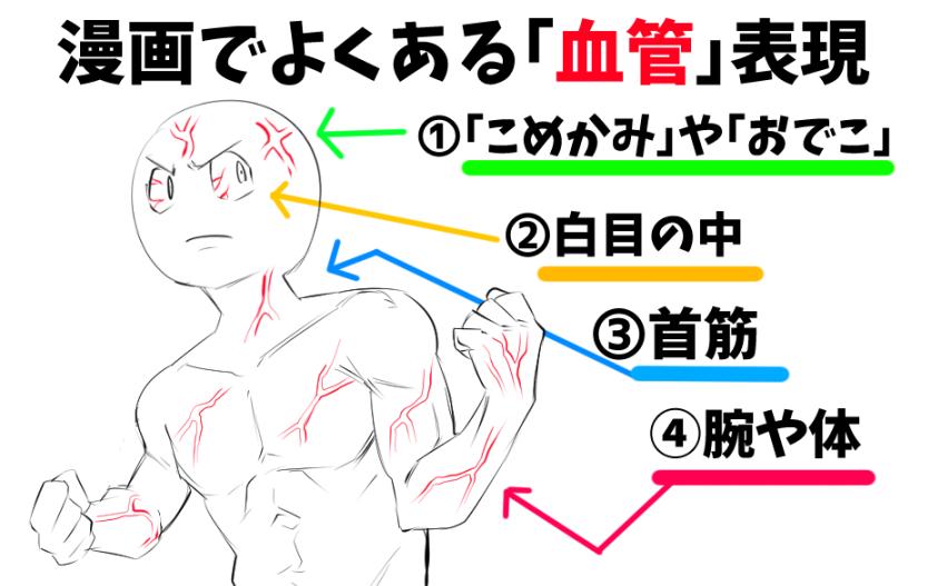 模写のコツ 体の描き方