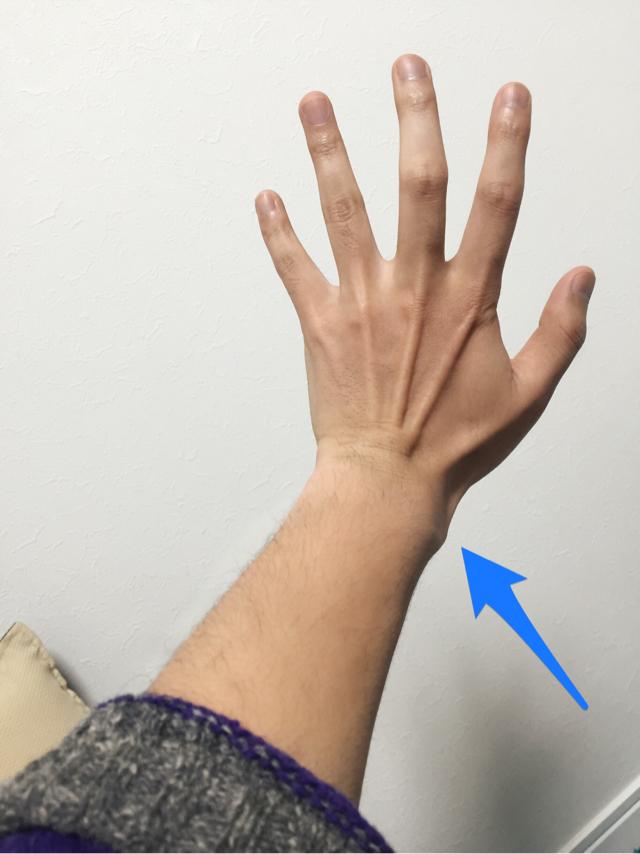 手のデッサン 手の資料
