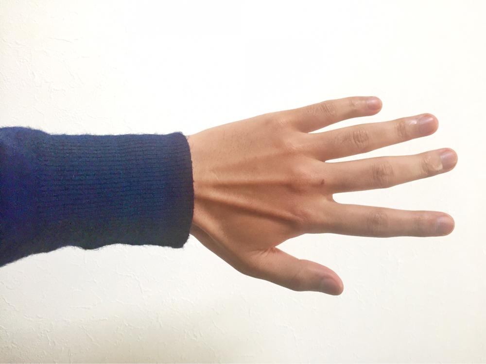 手の描き方 手の資料