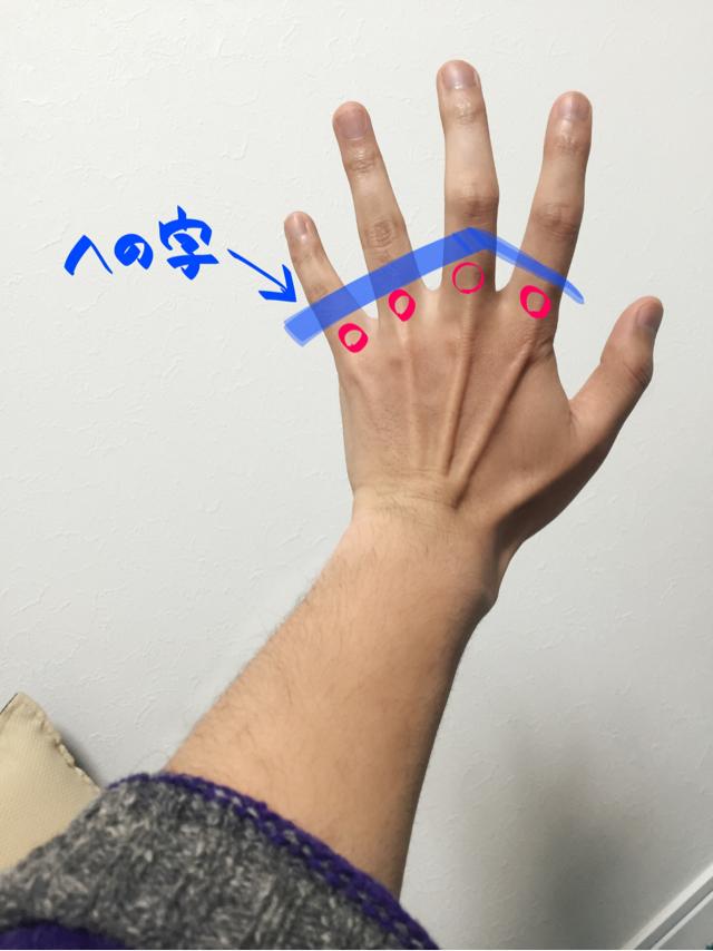 手の描き方 手の資料 上達法