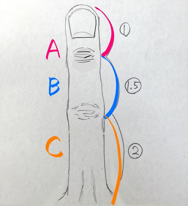 指の描き方 下書きのコツ 手のイラスト
