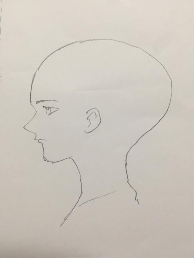 初心者が絵を描く 顔の描き方 イラスト初心者の練習