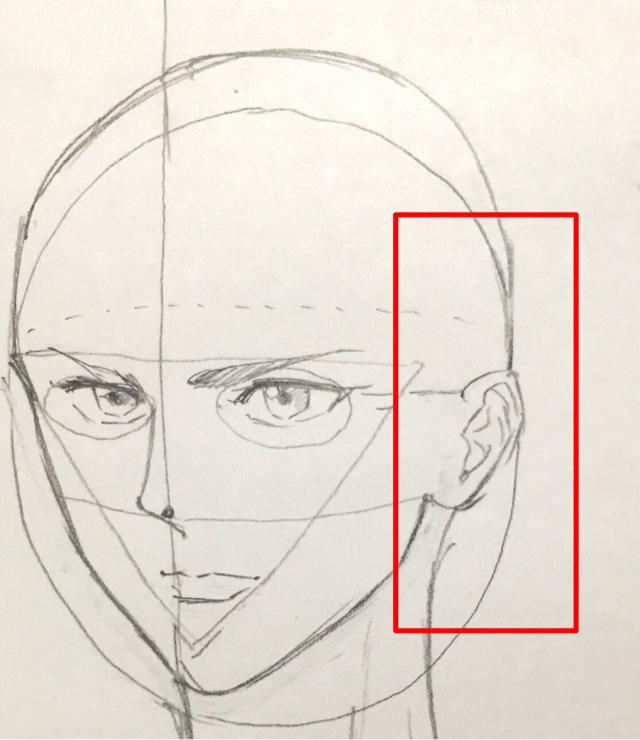 顔の描き方 耳の書き方 初心者が絵を描く