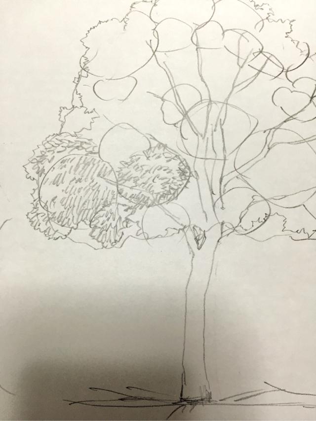 木イラストの描き方 絵の初心者ほど一気に上達する 木の書き方練習法