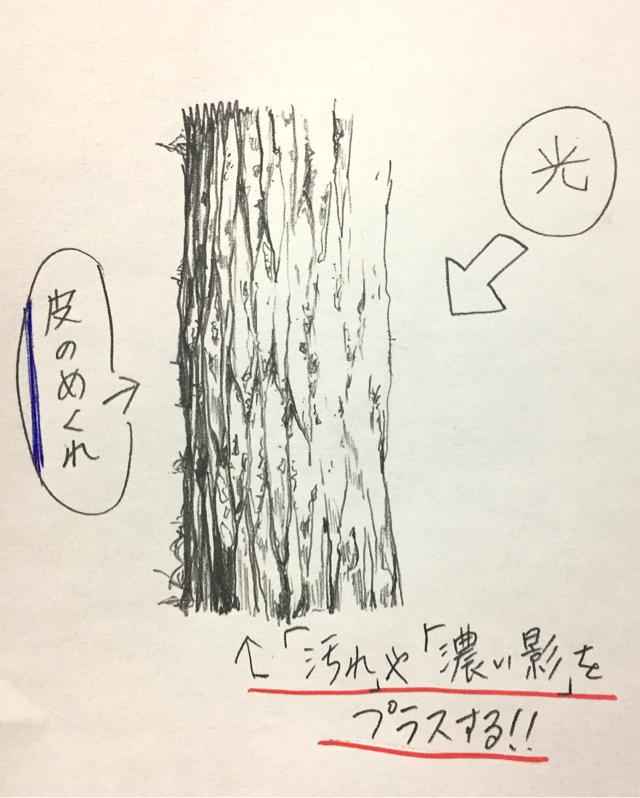 木イラストの描き方】絵の初心者ほど一気に上達する【木の書き方